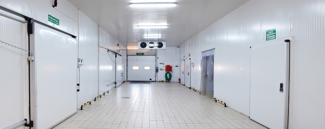 Turnkey Cold Room Projects